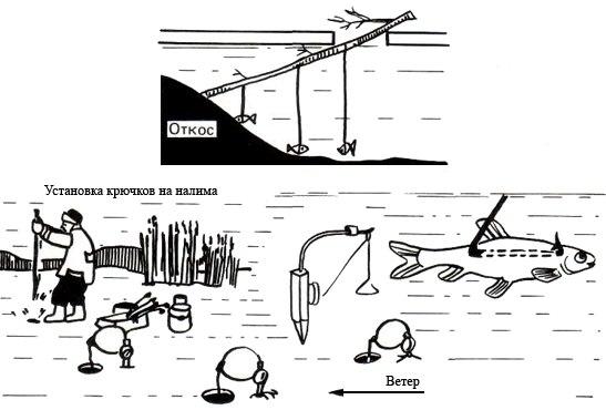 Техники и секреты ловли налима